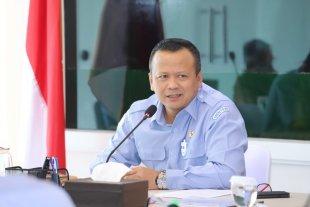 Menteri KKP Soal Benih Lobster : Silahkan Cek Audit
