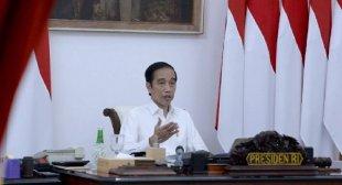 Jokowi Minta Perkuat Ekonomi Desa di Tengah Pandemi