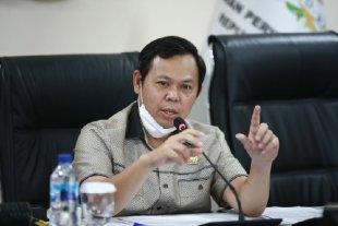 Food Estate Berpotensi Merambah Hutan, Sultan Najamudin Dorong Pemerintah Terapkan Sistem Agroforestry